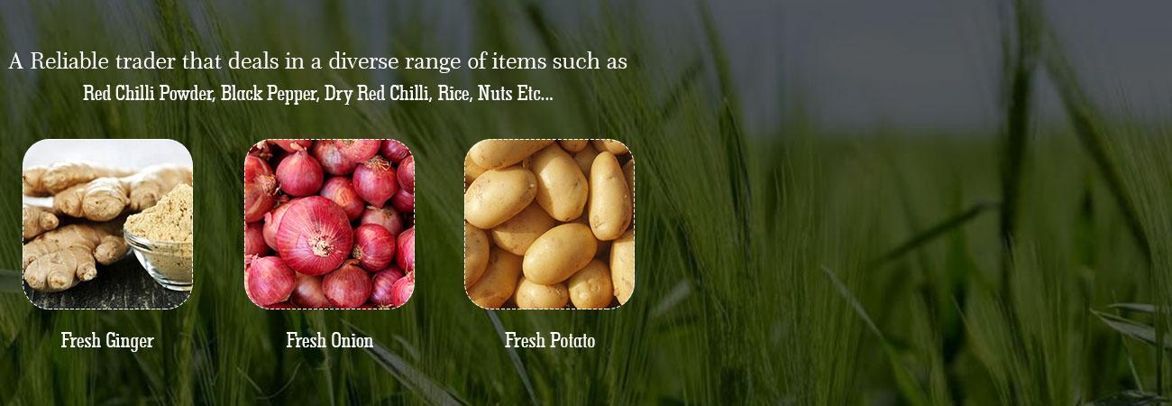 Global IQ
