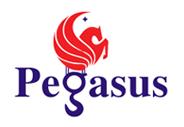 Pegasus Technocrats