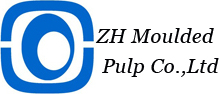 ZH MOULDED PULP CO., LTD.