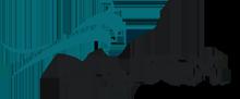 Lynx Pressure System