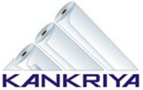 Kankriya Enterprises Pvt. Ltd