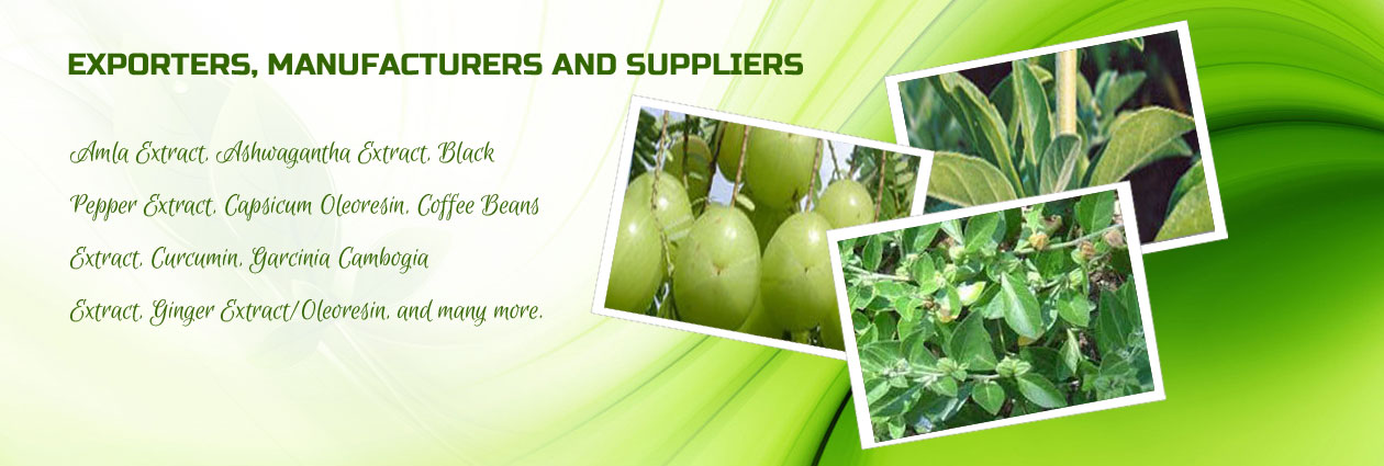 Nutraceutical Ingredients Manufacturer,Nutraceutical