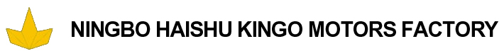 NINGBO HAISHU KINGO MOTORS FACTORY