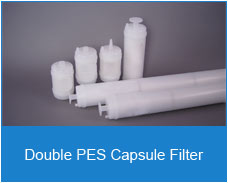 Double pes capsule Filter