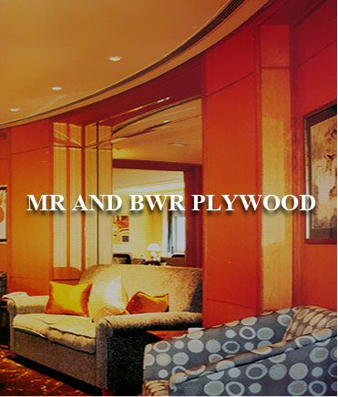 MR and BWR Plywood