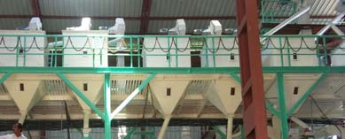 Modern Rice Milling Plant