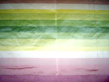 Printed Silk Taffeta Fabric
