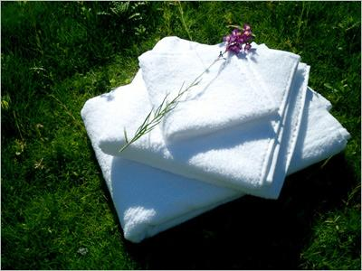 Woven Cotton Towels
