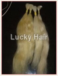Golden Bleached Human Hair
