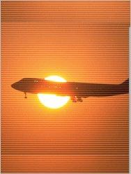 Air Freight Logistic