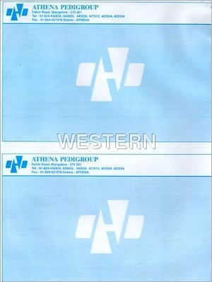 Preprinted Computer Stationery Paper