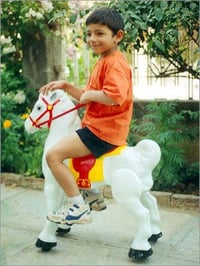 Galloping Horse Toy