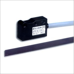 Magnetic Transducer And Strip