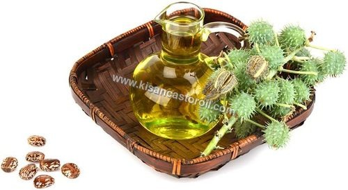 Pale Pressed Refined Castor Oil