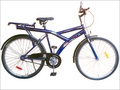 Oster Ultimate Cycles
