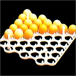 Egg Tray (42)