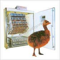 Emu Incubator