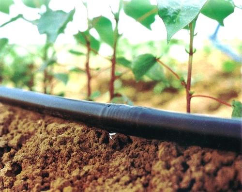 Drip Irrigation System Rotation Angle: Round
