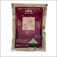 Lipel SP
