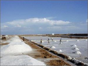 Solar Salt
