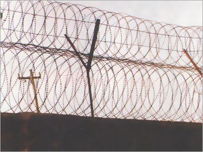 Razor Barbed Fencing Wire