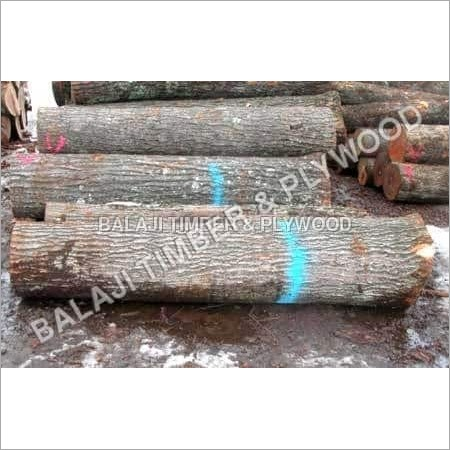 Indian Teak Wood Logs