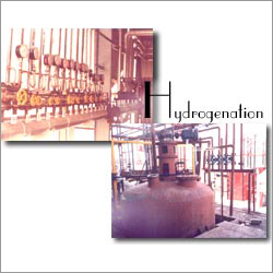 Industrial Hydrogenation Plant