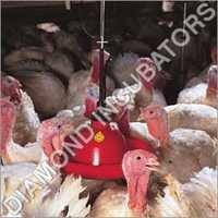 Poultry Drinker