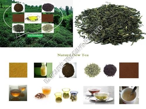 Tea Extract Powder