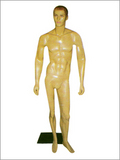 Full Body Men Mannequins