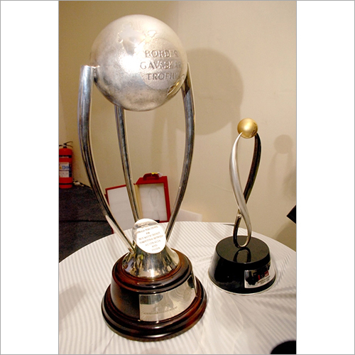 Sports Cup Trophies