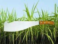 Sugar Cane Cutting Knife