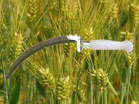 Grass Sickle