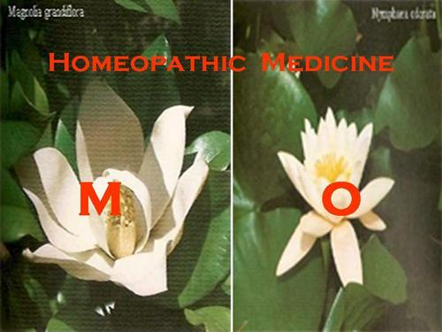 HOMEOPATHIC MEDICINES - M - O Exporter, HOMEOPATHIC