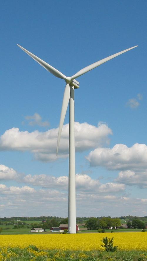 Wind Mills Forgings