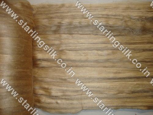 Muga Silk Cocoon
