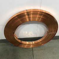 Bare Copper Strip