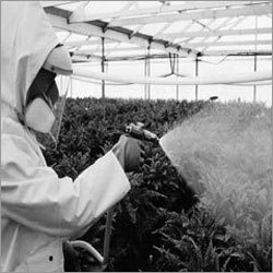 Chemical Additives for Agricultural Pesticides