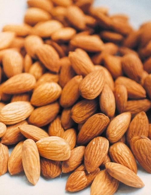 Role Of Vermi Compost In Almond-Badam
