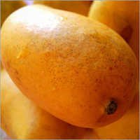 Fresh Mango Pulp