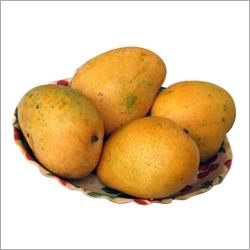 Safeda Mango