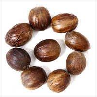 Nuts & Kernels