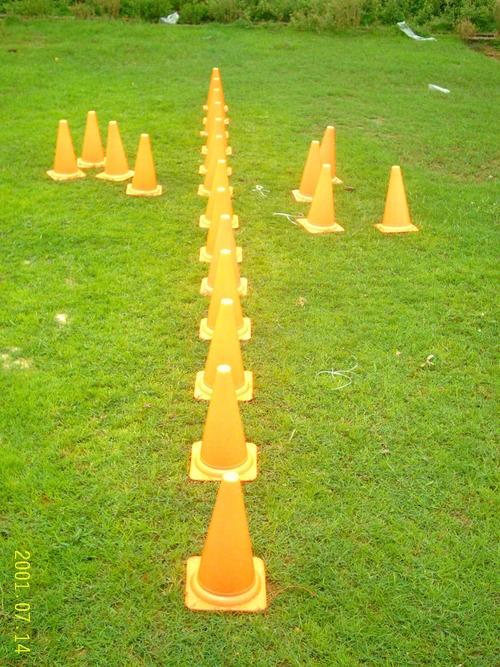 Hurdle Cone