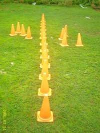 Cone Hurdles