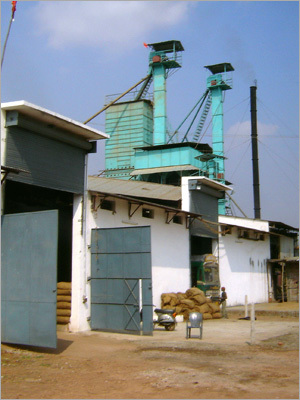 Parboiled Rice Plant