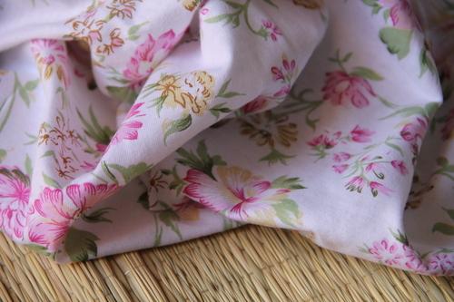 Organic cotton Knitted fabrics