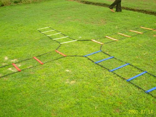 Flat Agility Ladders