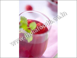 Raspberry Sugar Free Sucralose