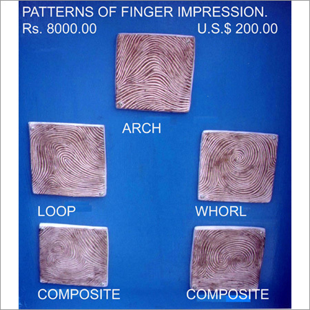 Finger Prints Model