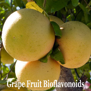 Grape fruits Bioflavonoids Complex